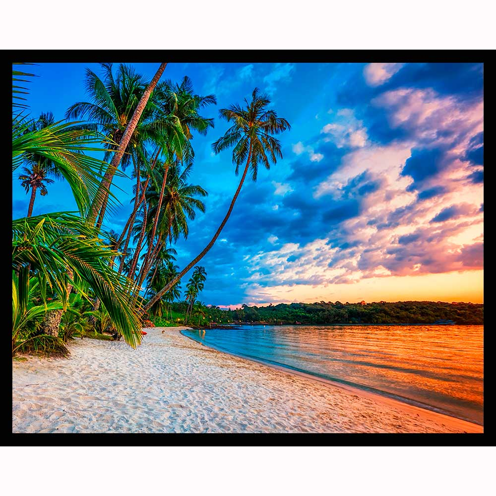 Exotic Beach: Tropical Beach At Sunset